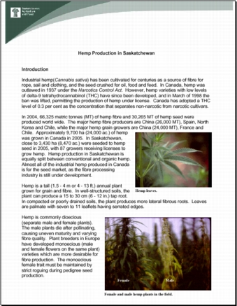 Hemp Production in Saskatchewan